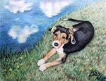 Arts And Dogs - sheperd puppy dog