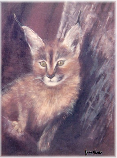 Oeuvre >> Rita Palm >> Caracal Chaton