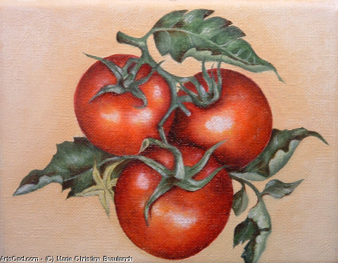 Oeuvre >> Marie Christine Beaulande >> Grappe de tomates