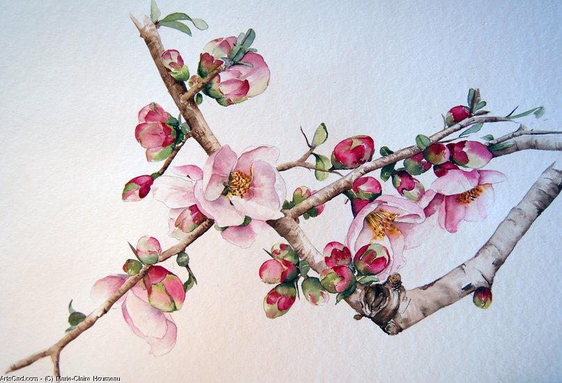 Branche De Cerisier Au Japon
