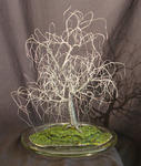 Sal Villano Wire Tree Sculpture - PETIT BONSAI ORME - arbre sculpture métallique , par sal villano