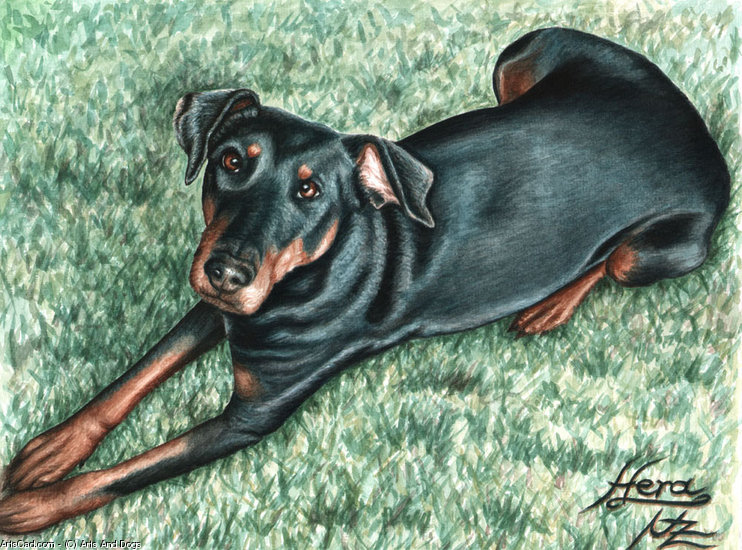 Oeuvre >> Arts And Dogs >> Dobermann
