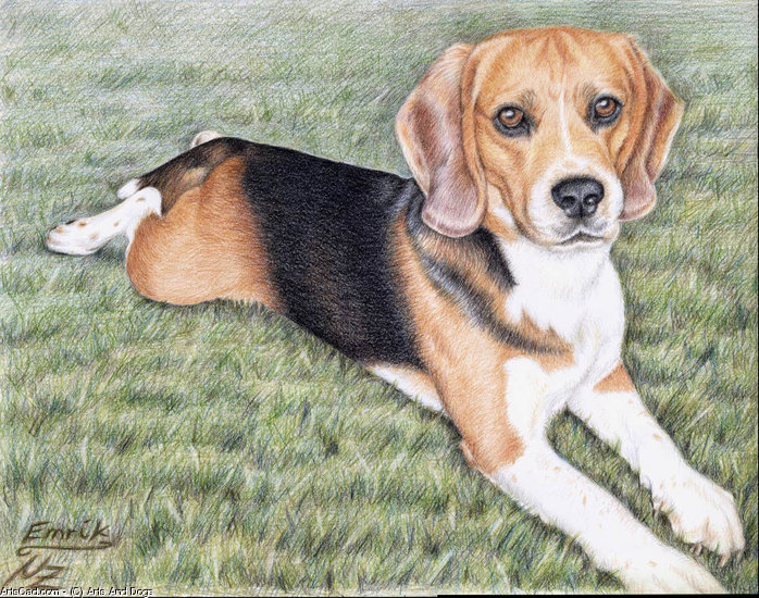 Oeuvre >> Arts And Dogs >> beagle emrik