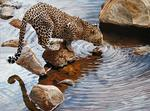 Emil Antony - Leopard potable