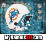 Travis Settineri - miami dauphins